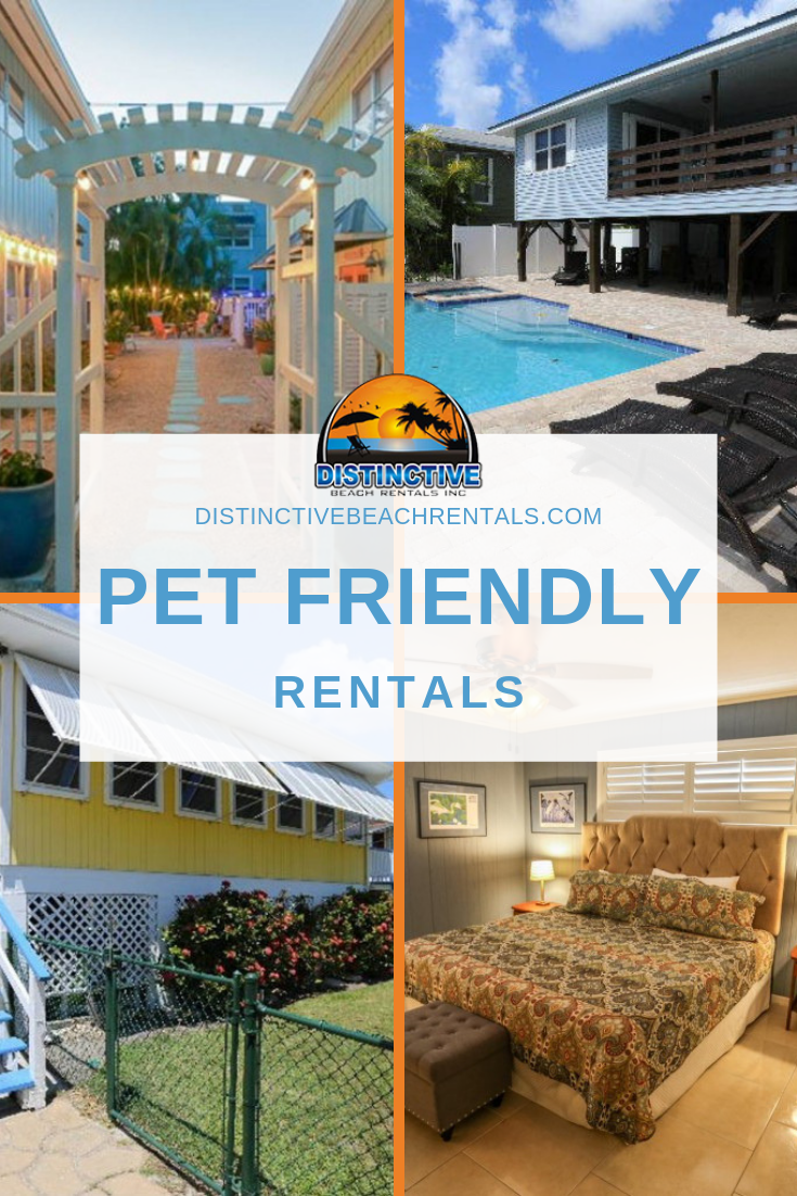 Pet-friendly rentals in Fort Myers Beach are perfect for dog owners who travel with their pets.