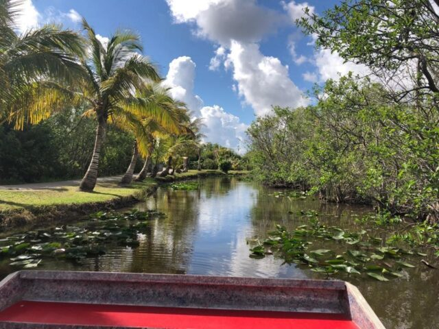 Boat view of an Everglades National Park Tour in Florida