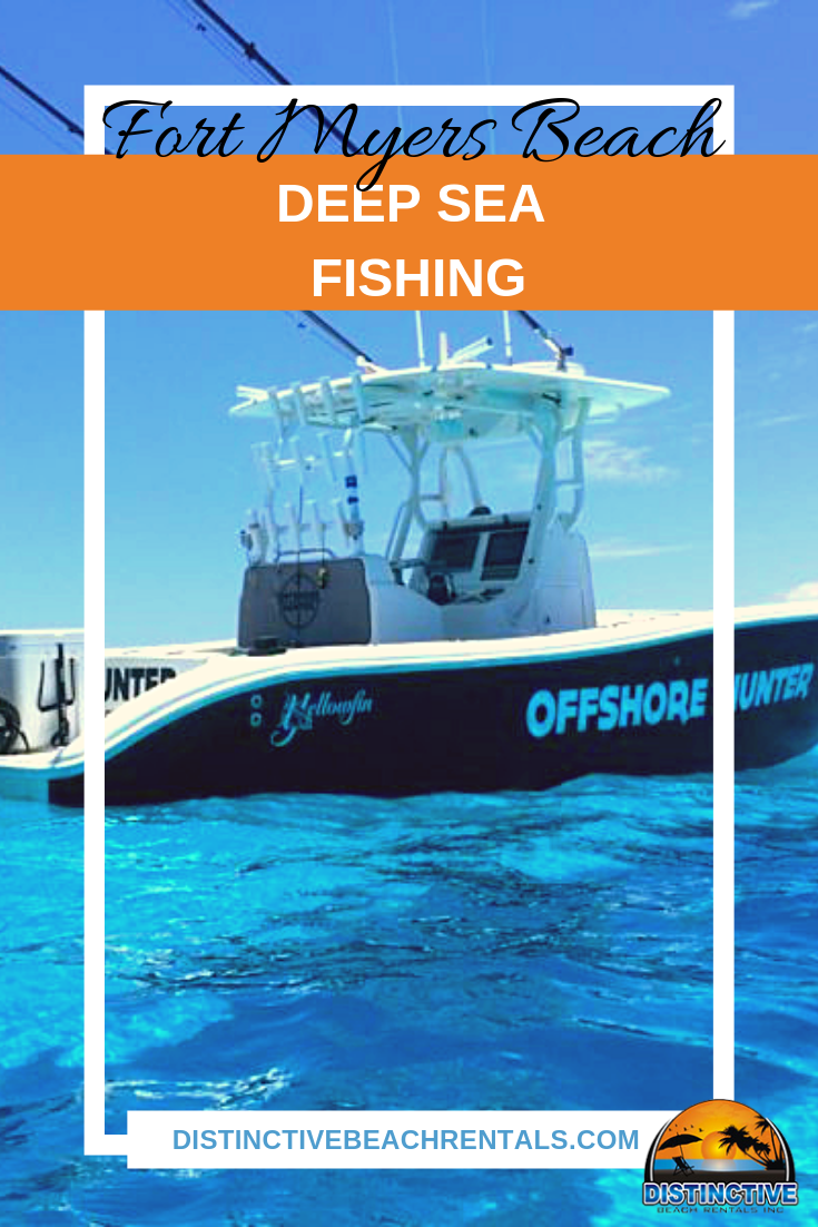 Florida travelers during the summer are able to experience some of the best gulf fishing for the year. There is some wonderful deep sea fishing, also known as offshore fishing, opportunities available during the peak of the summer heat.